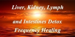 Organ Detox Frequency Healing