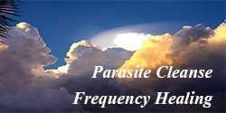 Parasite Cleanse Frequency Healing