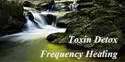 Toxin Detox
