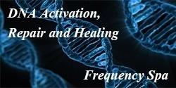 dna activation and repair