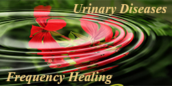 urinary diseases healing