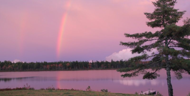 View of Harris Lake with rainbow
